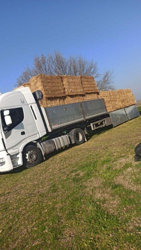 trasporto paglia fieno nord italia alborghetti